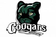 Logo-Montigny2
