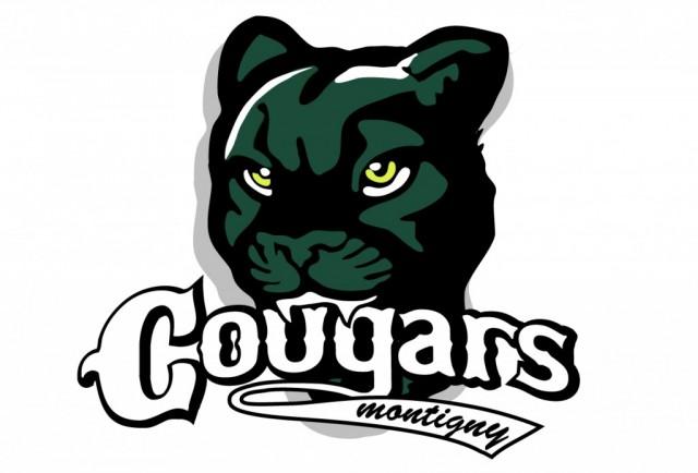 Logo-Montigny-e1343741560252