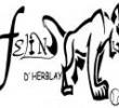 Felins d'Herblay