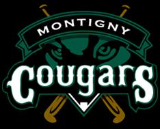 fanion club des Cougars de Montigny Baseball